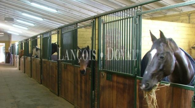 Lleida Hípica en venta