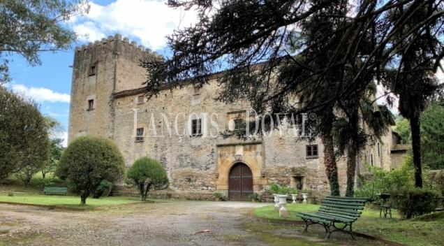 Asturias. Palacio de Doriga en venta.