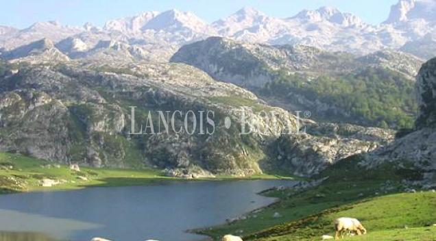 Picos de Europa. Restaurante en venta. La Venta, Cangas de Onís. Asturias
