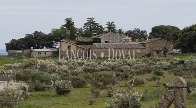 Cáceres. Dehesa en venta. Excelente finca de recreo y ganadera. Extremadura.