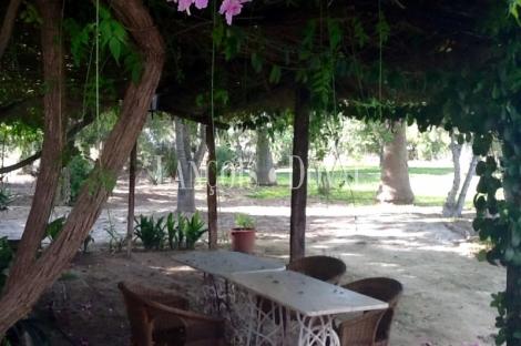 Fincas y casas rurales en venta en Jerez de la Frontera. Cádiz.