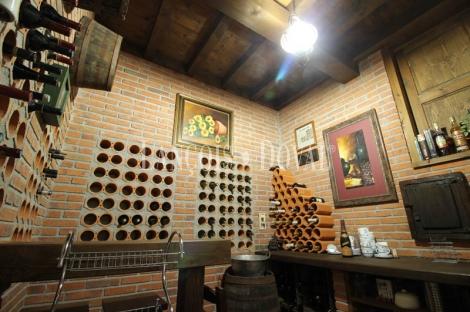 Asturias. Chalet rústico de piedra en venta. Arriondas. Parres