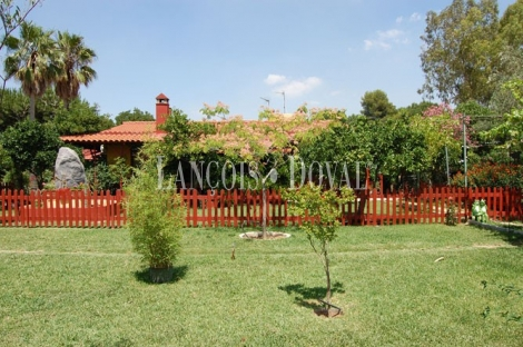 Carmona Sevilla Finca en venta