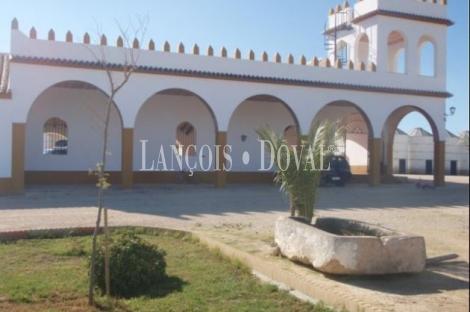 Puebla de Cazalla. Sevilla Cortijo y finca en venta