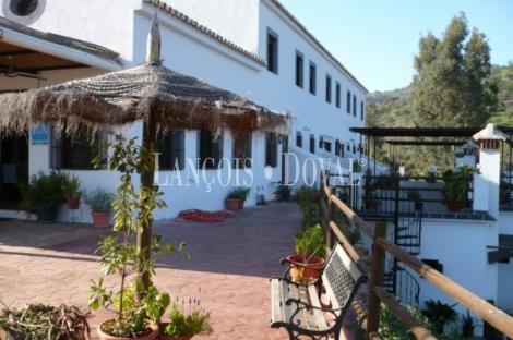 Sierra de Las Nieves. Málaga. Casas rurales en venta.
