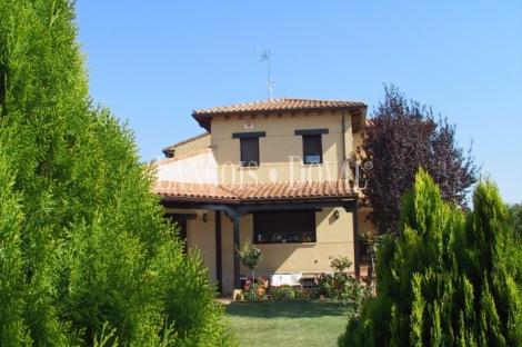 Zazuar. Ribera del Duero. Burgos.