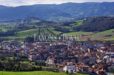 Villaviciosa. Asturias. Exclusiva propiedad en venta.