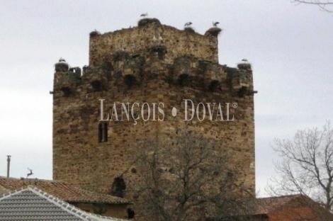 castillo en venta zamora