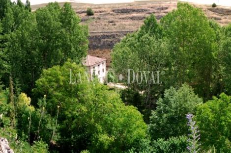 Finca, casa y antiguo molino en venta. Sepúlveda. Segovia.