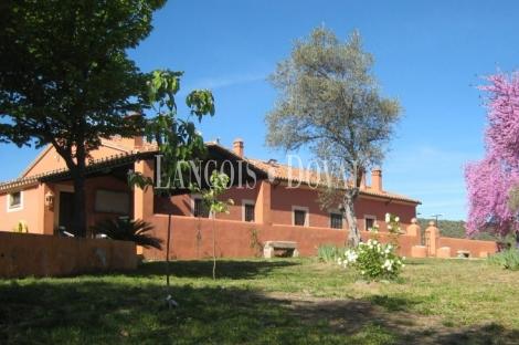 Finca olivar y antiguo lagar en venta. Pago de San Clemente. Trujillo. Cáceres.