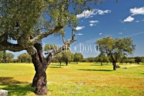 Extremadura. Fincas, dehesas y casas rurales en venta