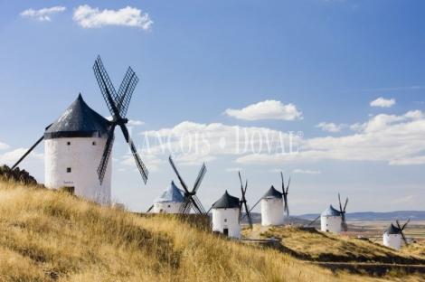Fincas singulares en venta. Toledo. Castilla La Mancha