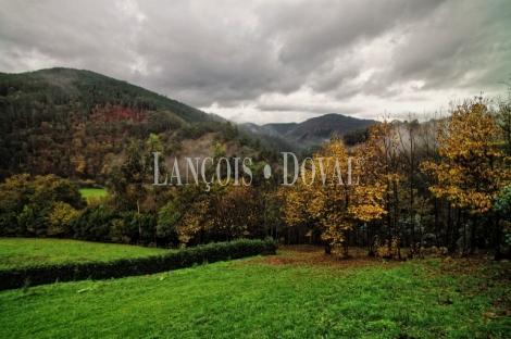 Finca y casa asturiana típica con panera en venta. Trevías. Valdés. Asturias.