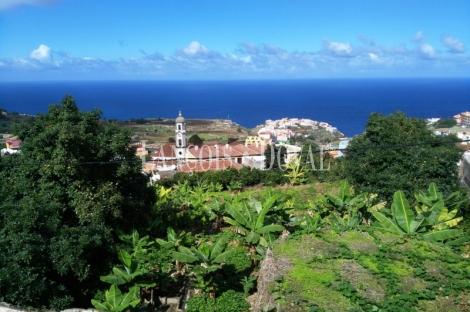 Canarias. Casa señorial histórica. Santa Cruz de Tenerife. Los Realejos