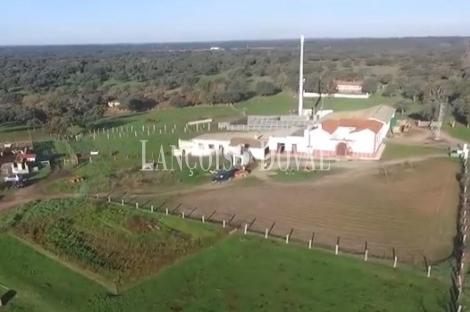 Córdoba. Finca de recreo en venta. Uso ganadero y agrícola. Los Pedroches.