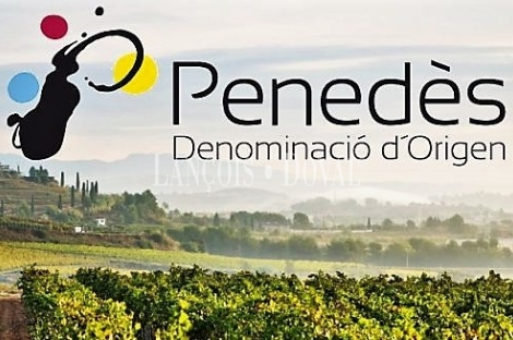 D. Origen Penedès. Finca vinícola en venta. Masía Ideal eventos u hotel.