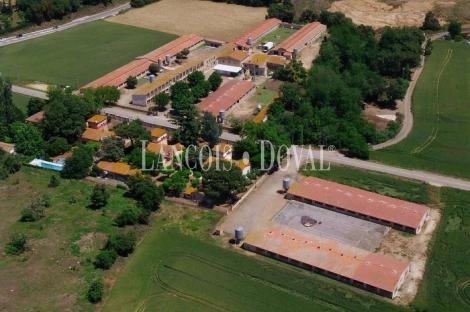 Girona. Un proyecto dotacional para la tercera edad en venta.