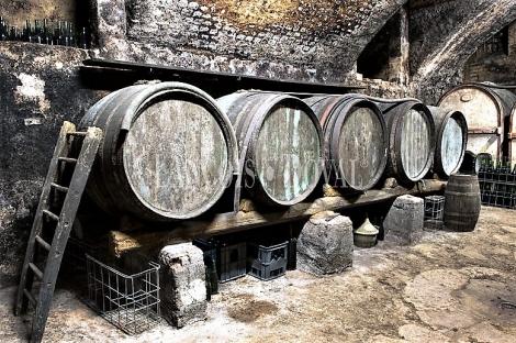Ribera del Duero. Bodega y viñedos en venta. Zona Peñafiel.