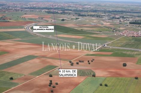 Pelabravo (Salamanca) Solar en venta