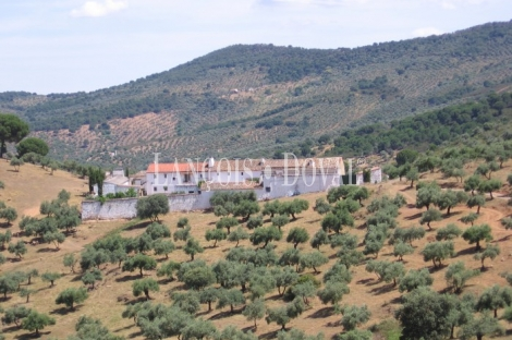Sierra Morena. Córdoba. Finca de olivar y ocio con gran Hacienda en venta