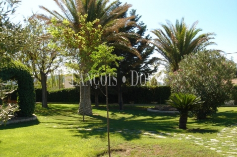 Salinas. Alicante Finca en venta