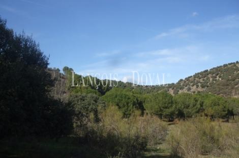 Madrid. Finca de recreo y caza en venta