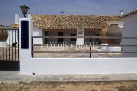 Campo Arcis. Requena Viñedo y finca en venta