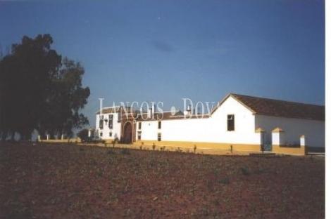Sevilla. Hacienda en Venta