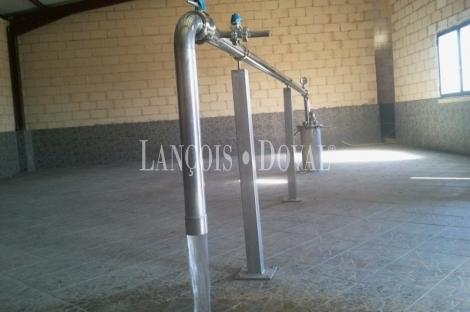 Soria Manantial de agua en venta