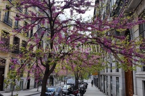 Madrid. Inversión en rentabilidad. Apartamento en venta. Zona Palacio.
