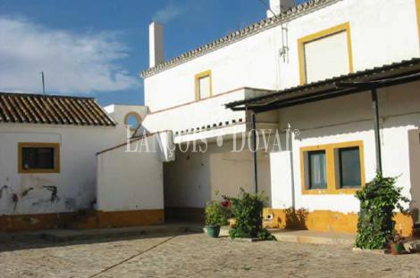 Sevilla. Carmona. Venta finca olivar y cortijo típico andaluz e instalaciones.