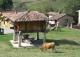 Concejo de Piloña. Asturias. Casas rurales en venta.