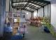Andújar. Jaén. Empresa  recolección y envasado de plantas aromáticas.