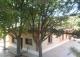 Finca y casa rural en venta. Pago de la Ladera de Valderrobledo. Palencia.
