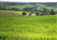 Burgos. Exclusiva finca de recreo en venta, eventos y agrícola. Zona de caza.