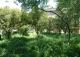Pinos del Valle Granada. Parcela en venta para 2 viviendas