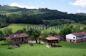 Casa palacio en venta coviella concejo de cangas de on s - Casas rurales lujo asturias ...