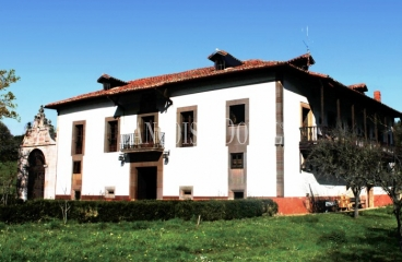 Parroquia de Santa María de Bayo, Concejo de Grado. Asturias. Casa Palacio en venta.