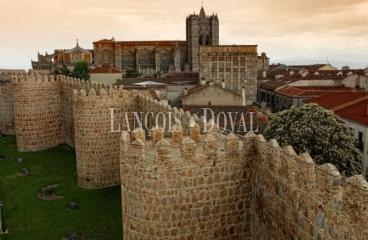 Ávila. Finca rústica en venta con vistas a la Muralla