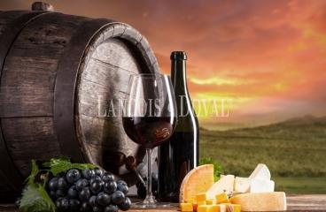 Bodegas y viñedos en venta. D O Castilla la Mancha