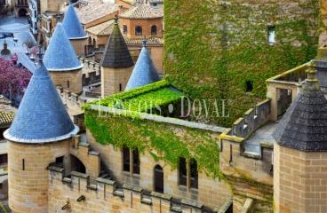 Venta casas señoriales y palacios en Navarra