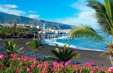 Canarias. Suelo o edificio equipamientos dotacionales en venta.