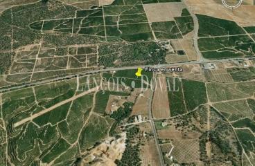 Isla Cristina. Huelva Finca urbanizable en venta