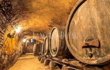 Bodegas y viñedos en venta en la Ribera Del Duero.